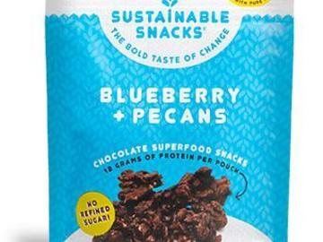 Snacks: Blueberry + Pecans Chocolate Superfood Snack